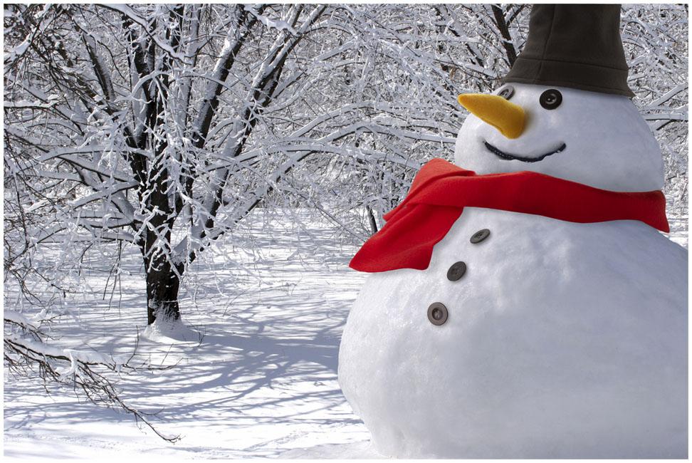 Conjunto de boneco de neve