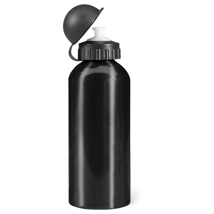 Metal Drinking Bottle (600 Ml) - Biscing